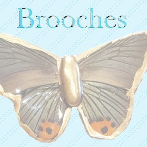 Real Butterfly Wing Brooches