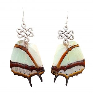 butterfly wing earrings, butterfly earrings jpeg.
