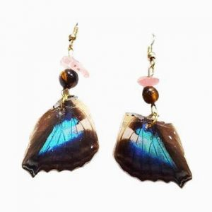 butterfly wing earrings - butterfly wing jewelry jpeg.