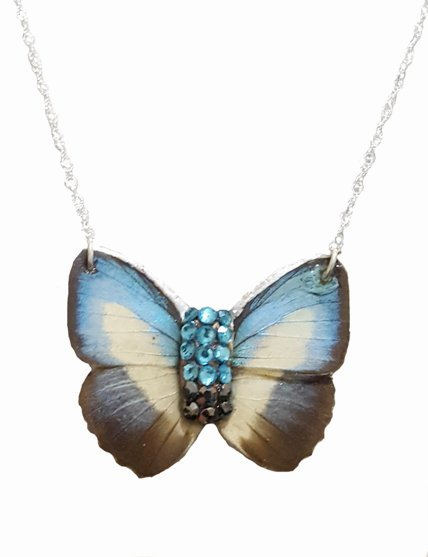 blue butterfly necklace, real butterfly necklace jpeg.