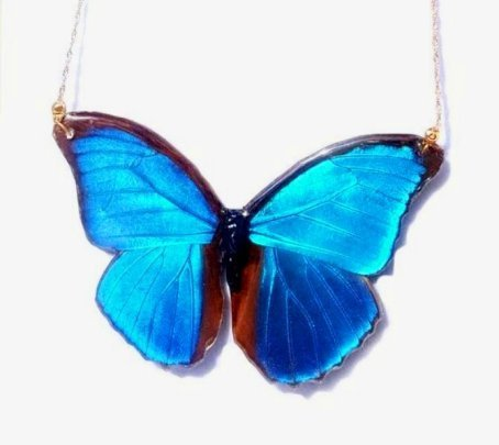 butterfly wing jewelry, blue morpho