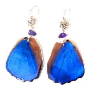 butterfly wing earrings, blue morpho butterfly jpeg.