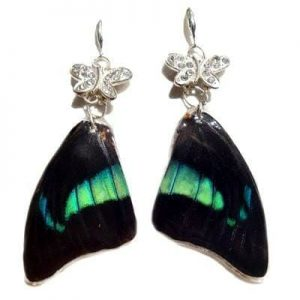 butterfly wing jewelry