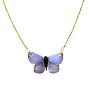preserved butterfly, butterfly wing necklace jpeg.