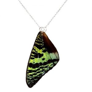 real buterfly wing necklace sterling silver