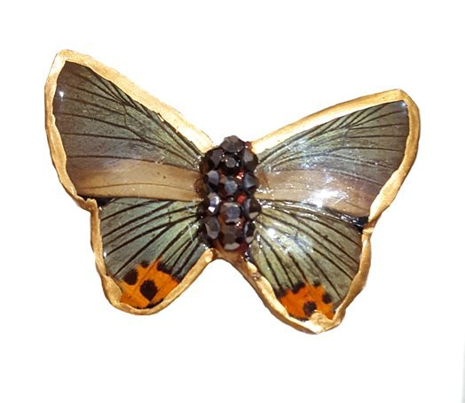 real butterfly wing brooch jpg.