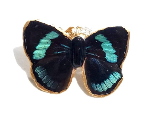 Real Butterfly Wing Jewelry - Butterfly Wing Jewelry