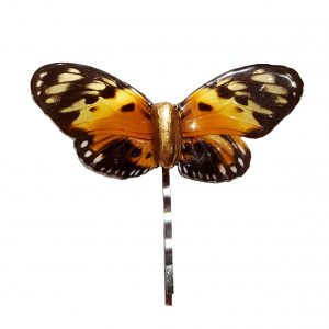 Real Butterfly Wing Jewelry - Butterfly Wing Jewelry jpg.