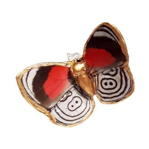 Real Butterfly Wing Jewelry - Buttefly Wing Jewelry