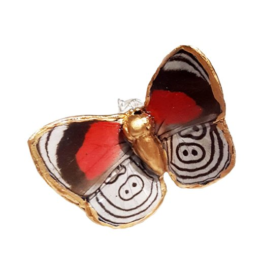 butterfly ring, wing ring jpep.