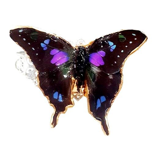real butterfly wing bracelet jpg.