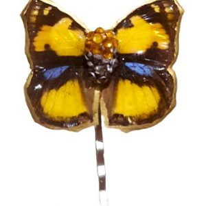 real butterfly wing hair pin