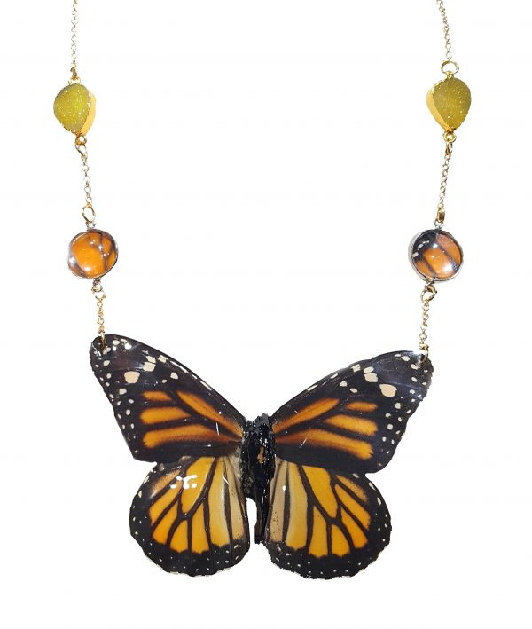 Real Butterfly Wing Jewelry - Real Butterfly Wing Necklace jpeg