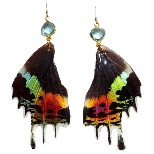 Real Butterfly Wing Jewelry - Real Buttefly Wing Earrings