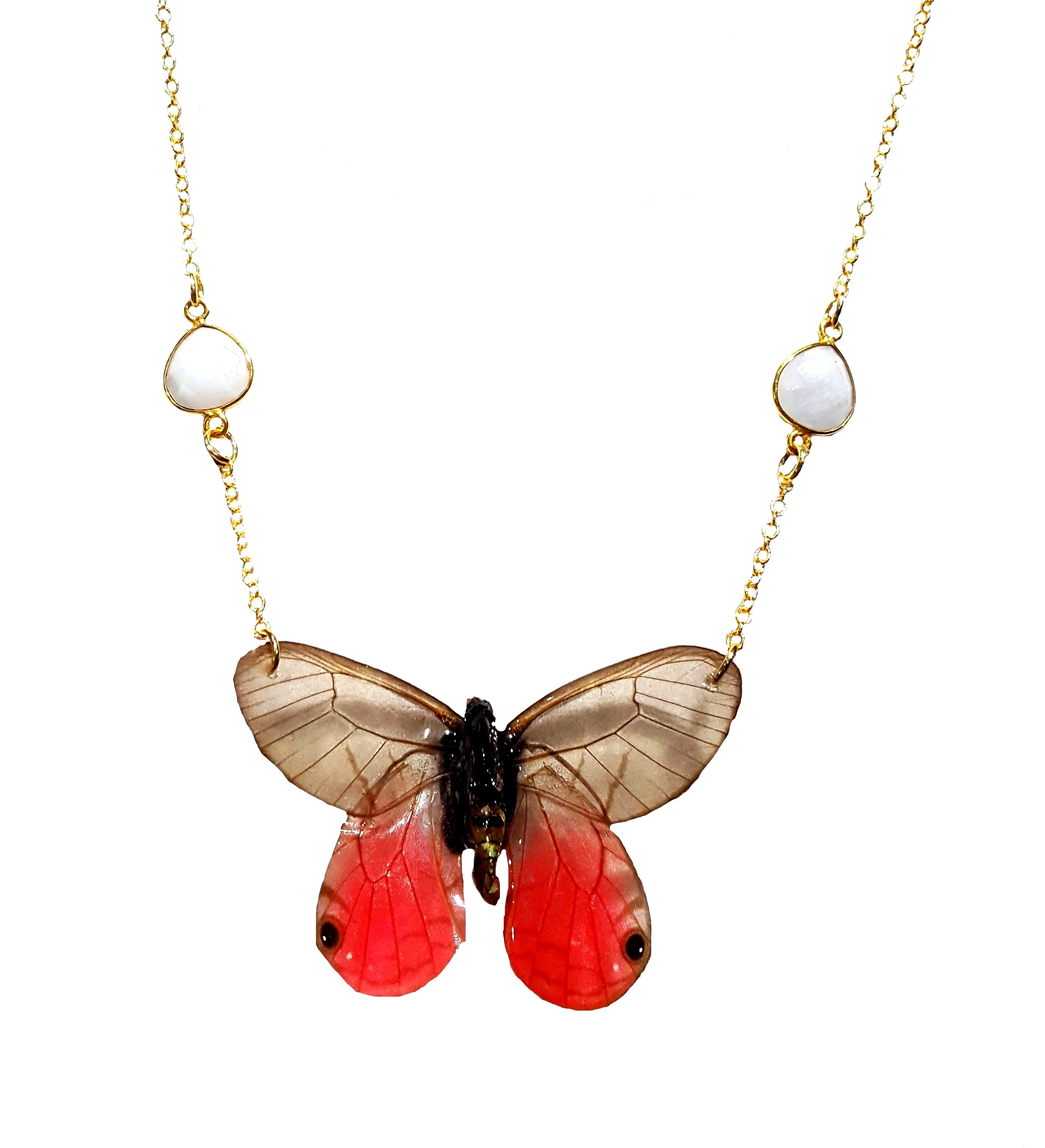 real butterfly wing jewelry jpg.