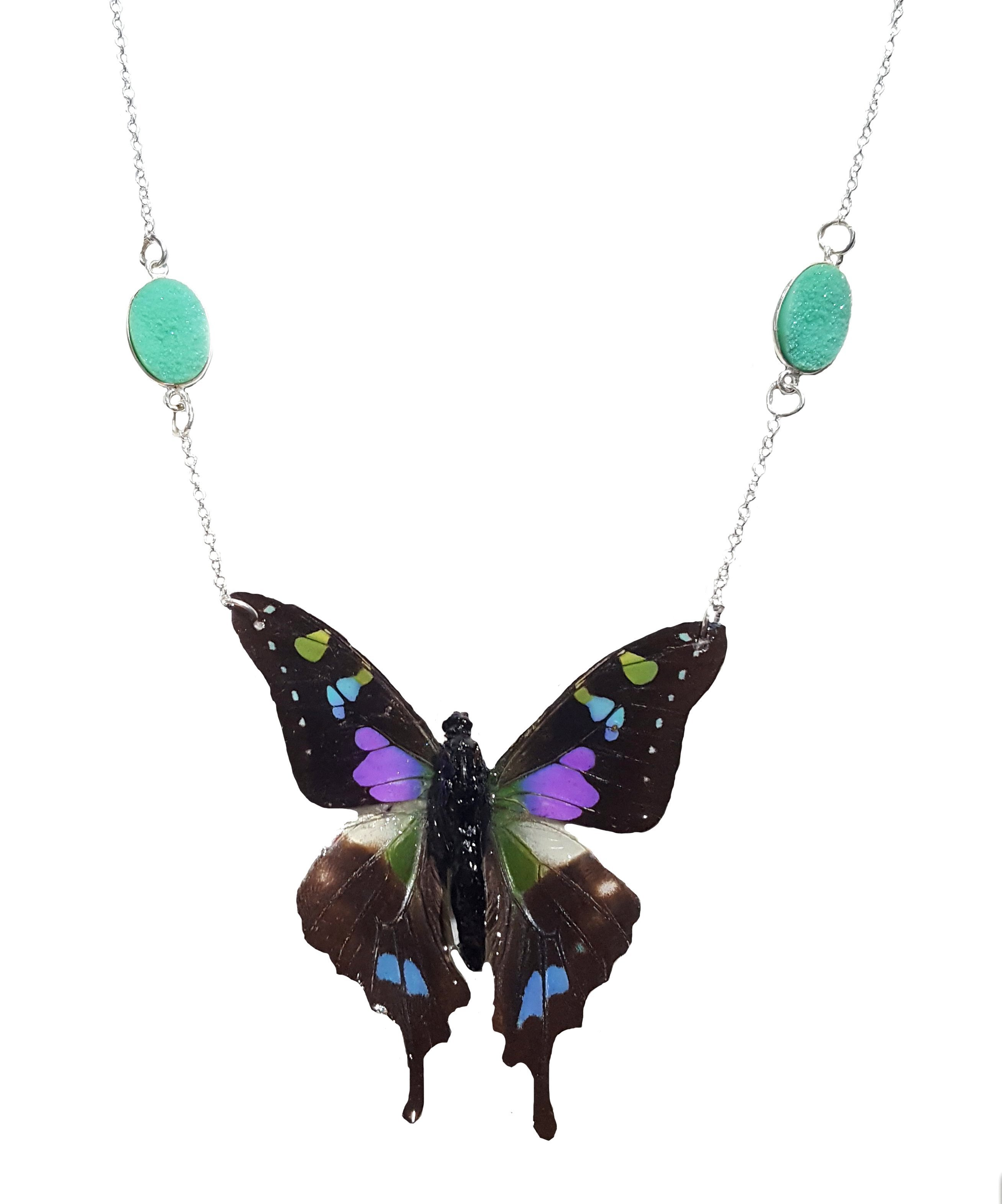 Erfly Wings Earrings Ecosia
