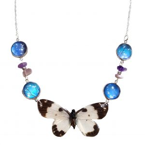 real butterfly wing jewelry jpeg.