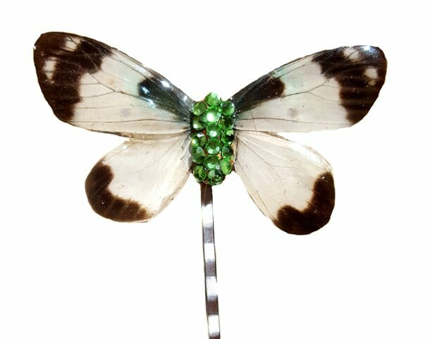 real butterfly wing hair pin jpg.