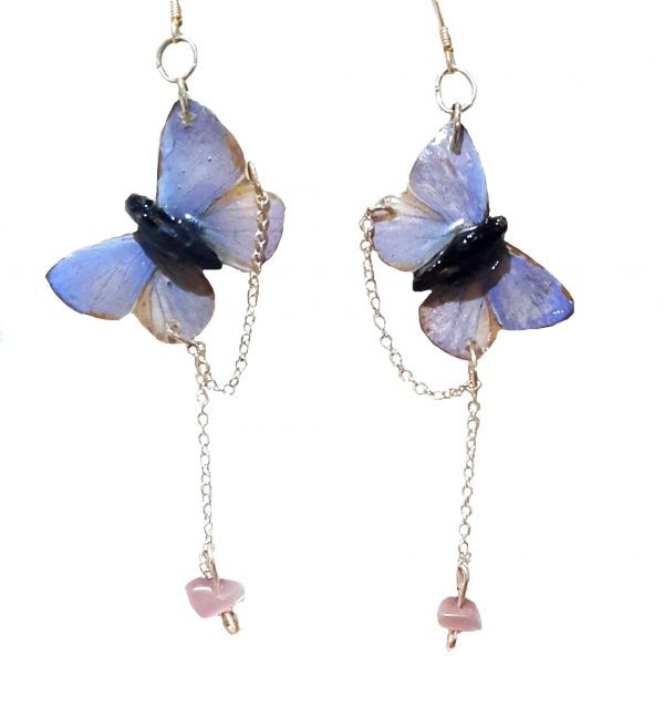 real butterfly wing jewelry jpeg