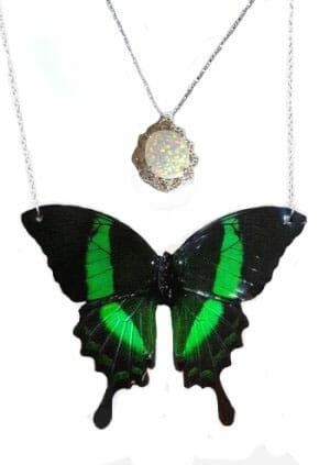 real butterfly wing necklace, butterfly wing jewelry jpeg.