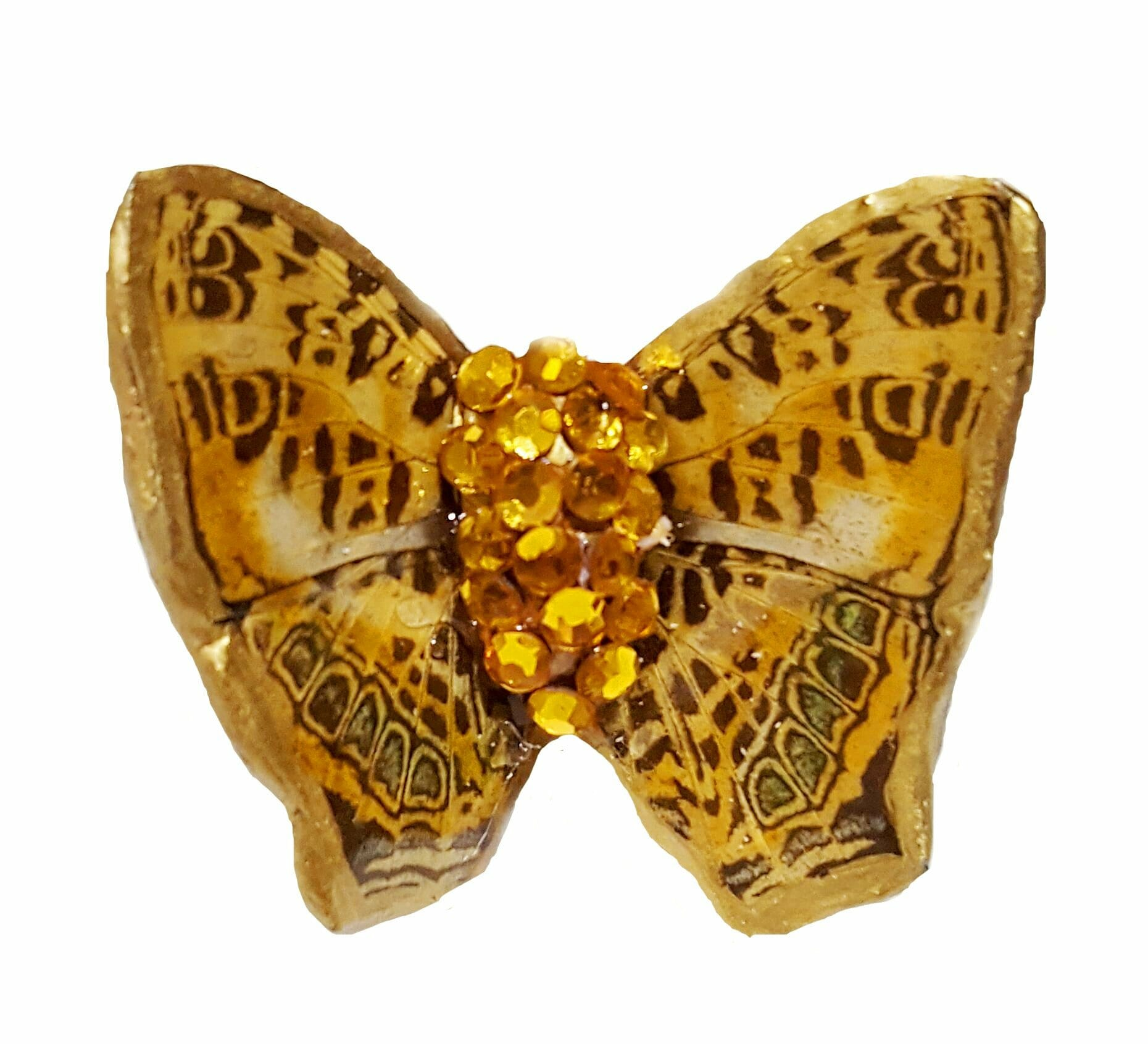 real butterfly wing ring jpg.