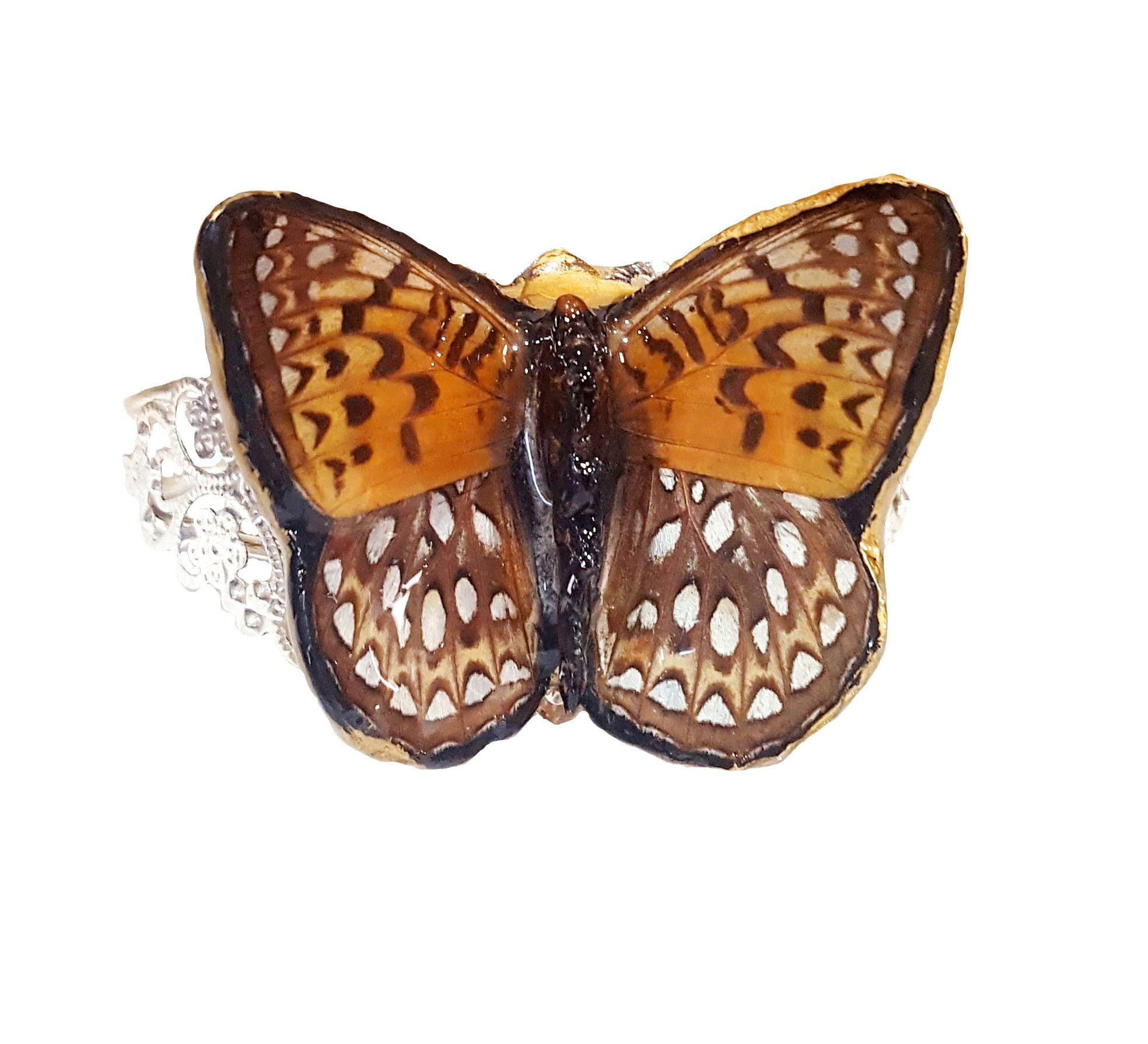 real butterfly wing bracelet