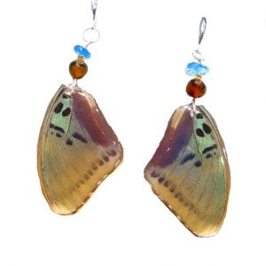 Real Butterfly Wing Jewelry, Real Butterfly Wing Earrings