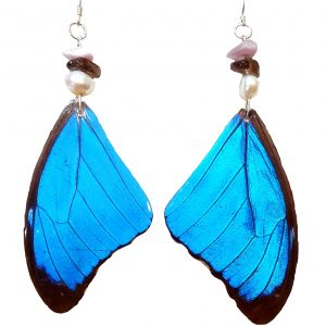 butterfly wing earrings, blue morpho butterfly wing earrings jpeg