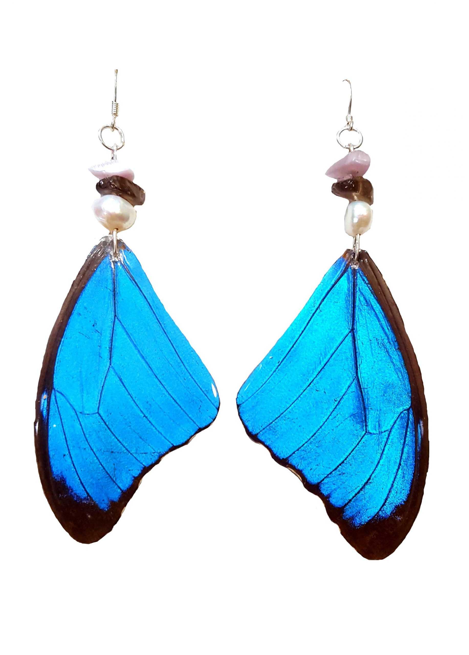 butterfly wing earrings, real butterfly wing jewelry