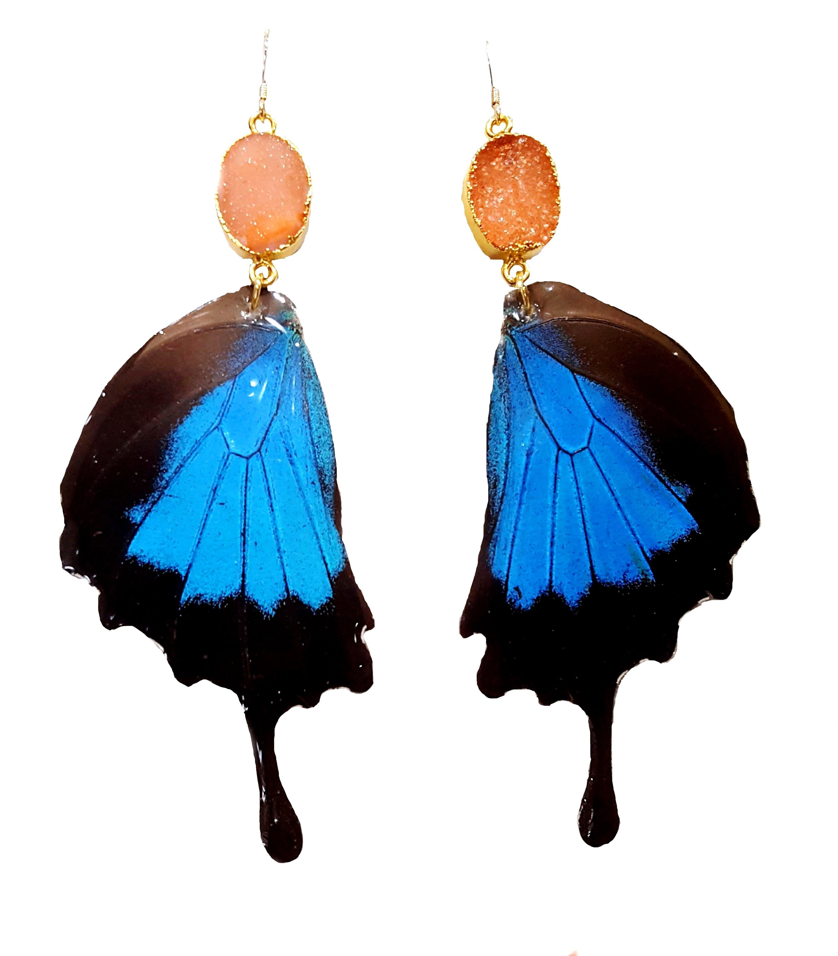 real butterfly wing earring jpg.