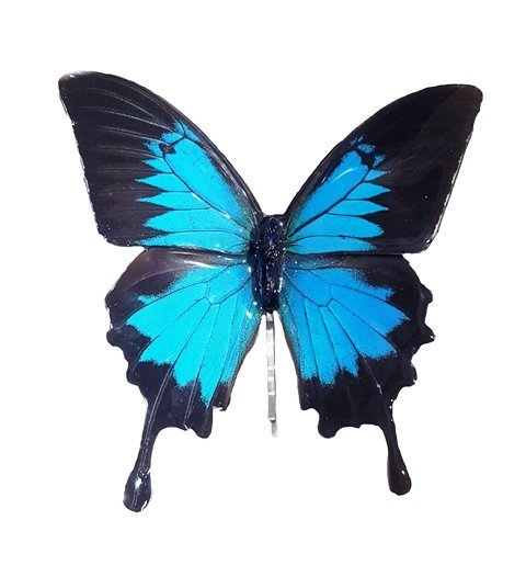 butterfly hair accessories for weddings jpg.