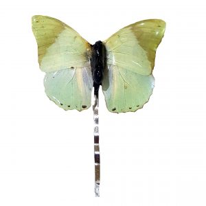 Real Butterfly Wing Jewelry, Real Butterfly Wing Hairpin