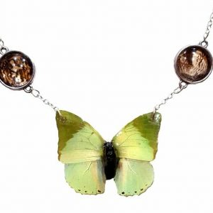 real butterfly wing neckace, real butterfly wing jewelry
