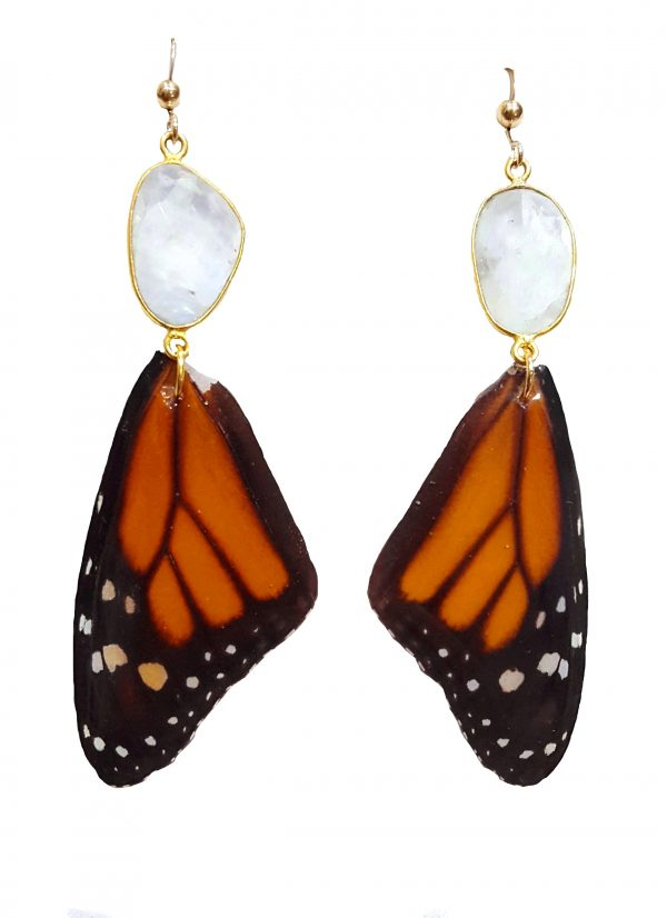 real butterfly wing earrings, butterfly wing earrings