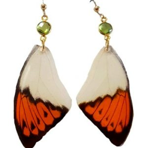 butterfly wing earrings, Real butterfly wings jpeg