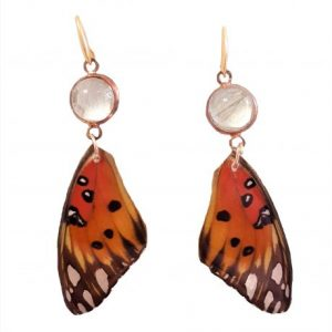 butterfly wing earrings, real butterfly wings jpeg.