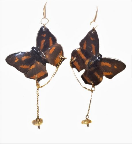 Butterfly-Wing-Earrings