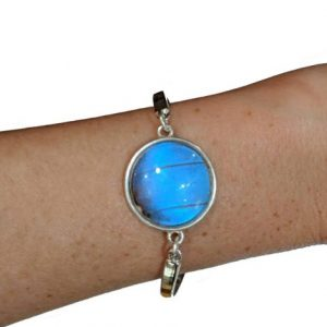 real butterfly wing bracelet jpeg.
