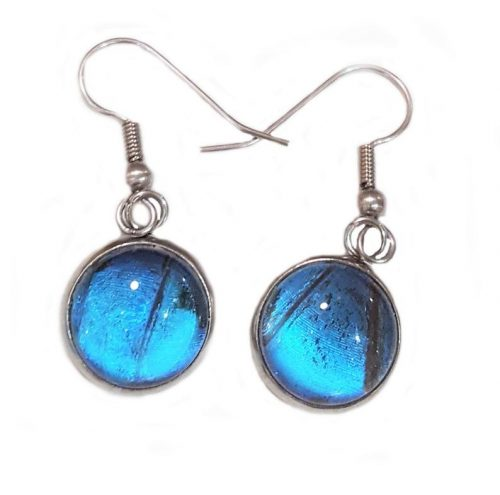 butterfly wing earring, blue morpho butterfly earrings jpeg.