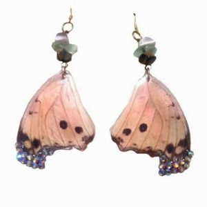 real butterfly wing earrings jpeg.